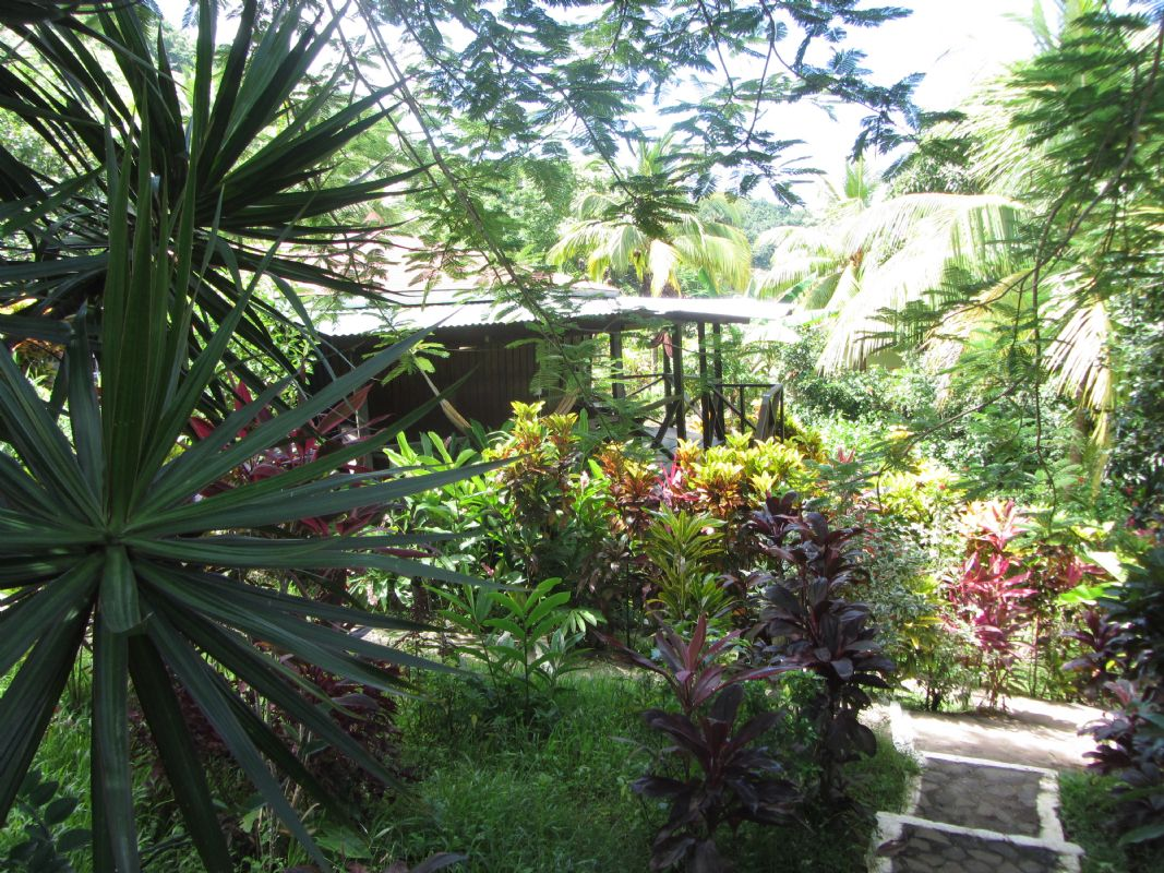 "../../holiday-hotels/?HolidayID=61&HotelID=306&HolidayName=Dominica-Dominica+%2D+The+Walkers+Island-&HotelName=Hibiscus+Valley+"">Hibiscus Valley"