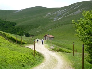 Walking holidays in spain el camino st jean pied de port to logrono self guided and guided - Bus logrono saint jean pied de port ...